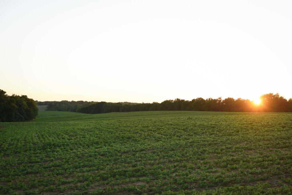 Blog - Iowa Land Company Blog