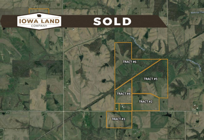 AppDavis Land Auction
